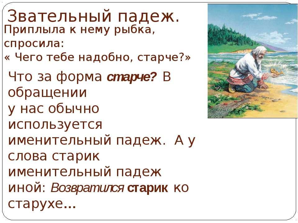 Звательный падеж. Приплыла к нему рыбка, спросила: « Чего тебе надобно, старч...