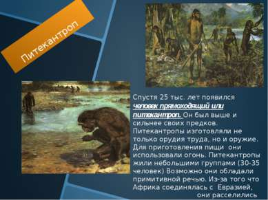 Питекантроп Спустя 25 тыс. лет появился человек прямоходящий или питекантроп....