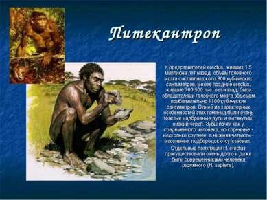 Питекантроп У представителей erectus, живших 1,5 миллиона лет назад, объем го...