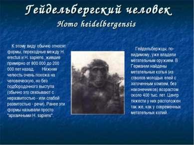 Гейдельбергский человек Homo heidelbergensis К этому виду обычно относят форм...