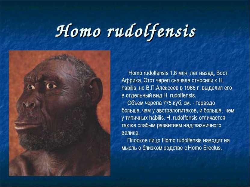 Homo rudolfensis Homo rudolfensis 1.8 млн. лет назад, Вост. Африка. Этот чере...