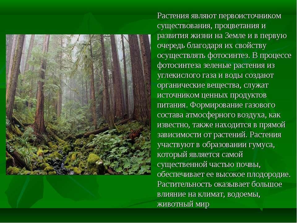 Растения являют первоисточником существования, процветания и развития жизни н...