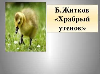 Б.Житков «Храбрый утенок»