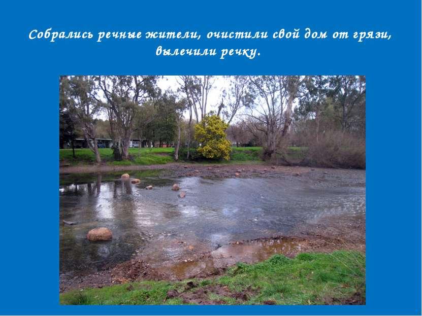 Собрались речные жители, очистили свой дом от грязи, вылечили речку.