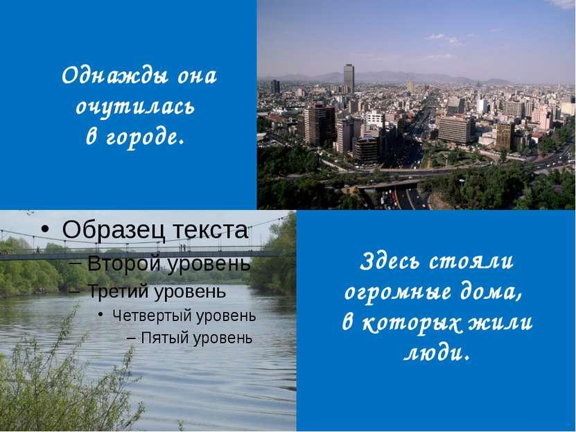 Однажды она очутилась в городе. Здесь стояли огромные дома, в которых жили люди.