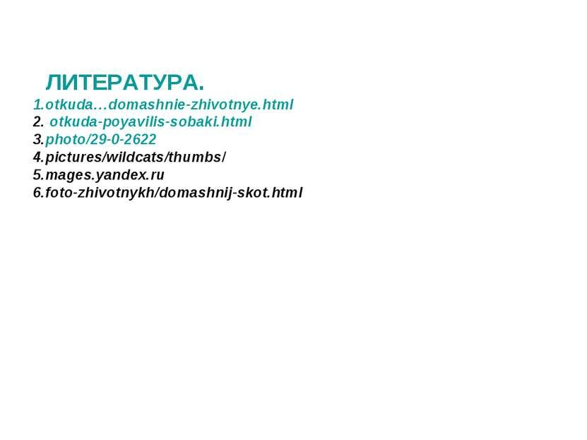 ЛИТЕРАТУРА. 1.otkuda…domashnie-zhivotnye.html 2. otkuda-poyavilis-sobaki.html...