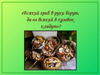 «Всякий гриб в руки берут, да не всякий в кузовок кладут»?