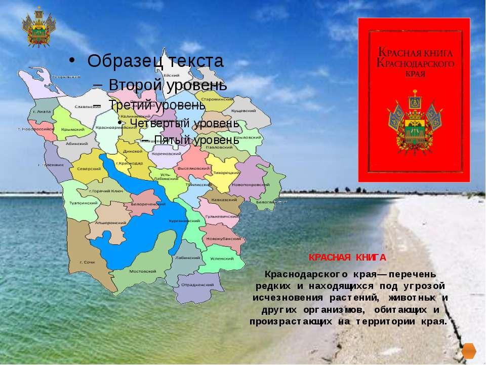 КРАСНАЯ КНИГА Краснодарского края— перечень редких и находящихся под угрозой ...