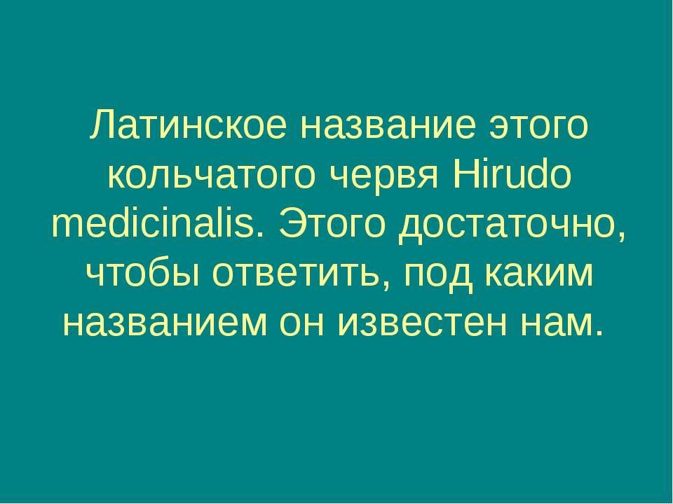 Латинское название этого кольчатого червя Hirudo medicinalis. Этого достаточн...