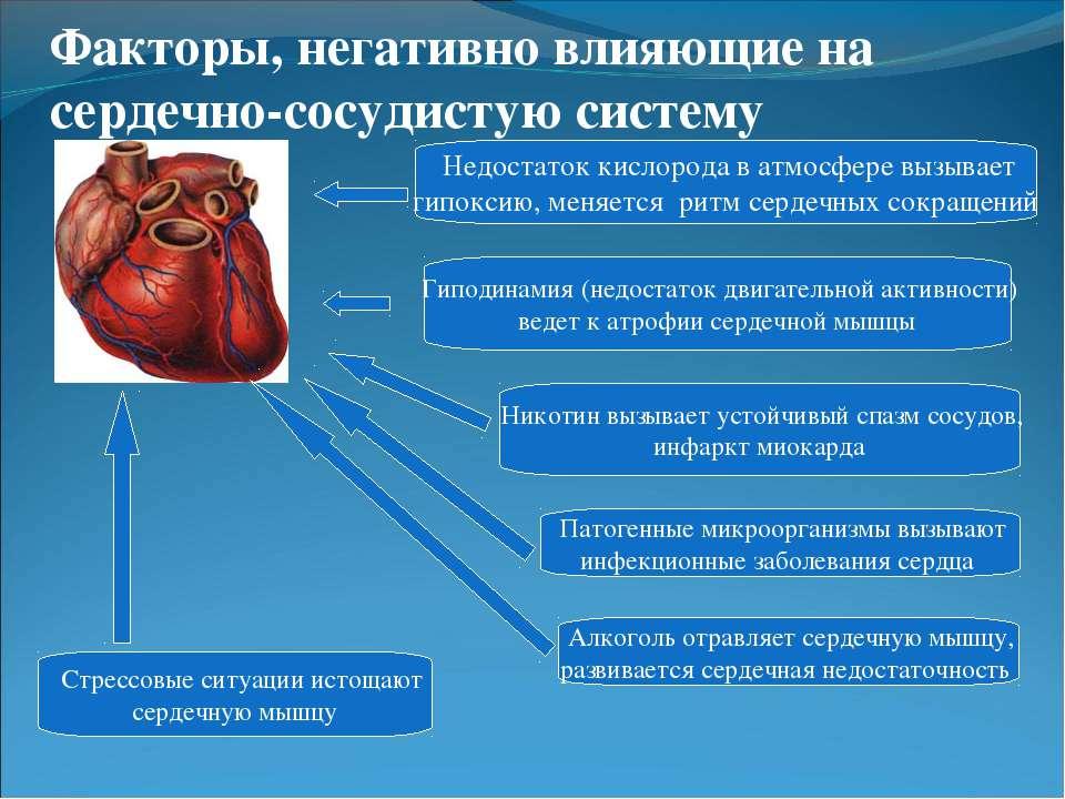 Гиподинамия (недостаток двигательной активности) ведет к атрофии сердечной мы...