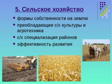 5. Сельское хозяйство формы собственности на землю преобладающие с/х культуры...