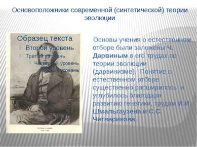 Основоположники современной (синтетической) теории эволюции Основы учения о е...