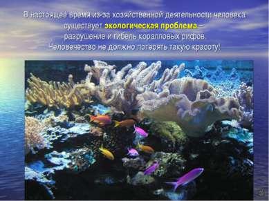 В настоящее время из-за хозяйственной деятельности человека существует эколог...