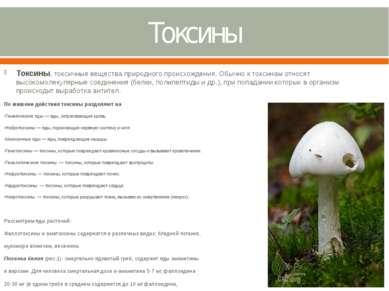 Токсины Токсины, токсичные вещества природного происхождения. Обычно к токсин...