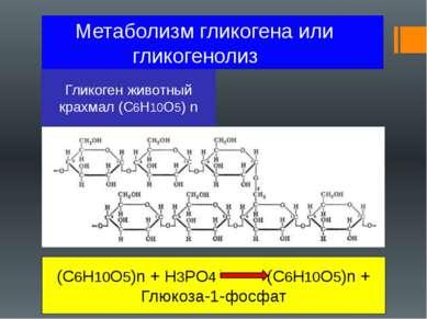 Метаболизм гликогена или гликогенолиз Гликоген животный крахмал (C6H10O5) n (...