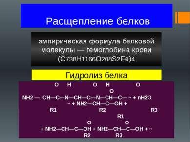 Расщепление белков эмпирическая формула белковой молекулы — гемоглобина крови...