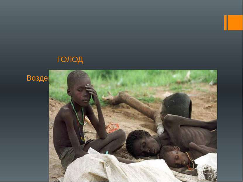 ГОЛОД Воздействие голода на организм