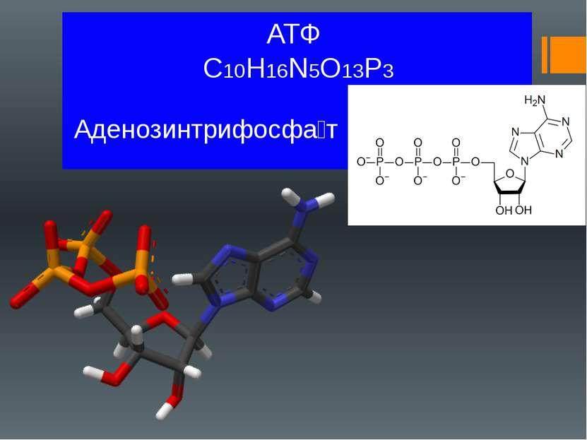 АТФ C10H16N5O13P3 Аденозинтрифосфа т