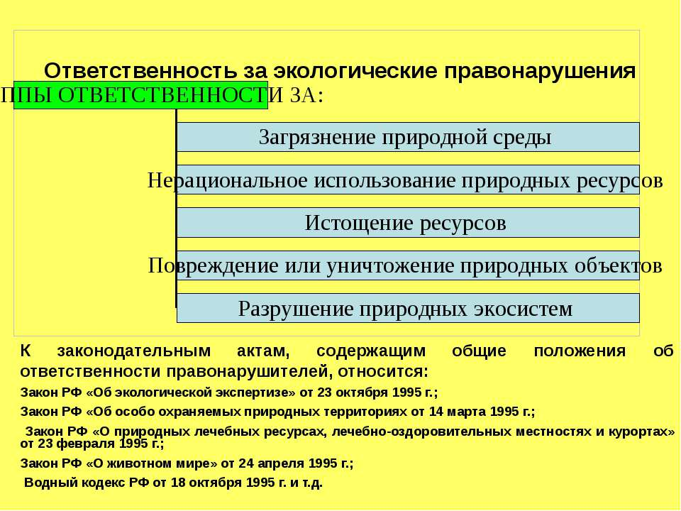 Ответственность за экологические правонарушения К законодательным актам, соде...