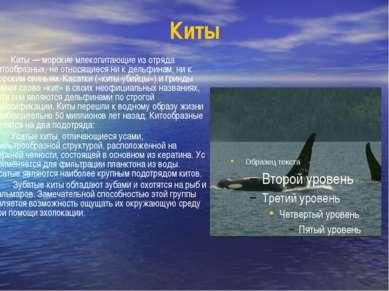 Киты Киты — морские млекопитающие из отряда китообразных, не относящиеся ни к...