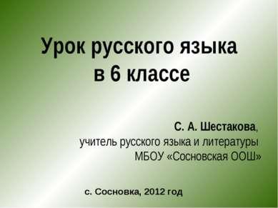 Урок русского языка в 6 классе С. А. Шестакова, учитель русского языка и лите...