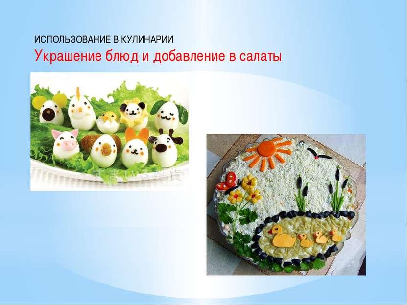 ИСПОЛЬЗОВАНИЕ В КУЛИНАРИИ Украшение блюд и добавление в салаты