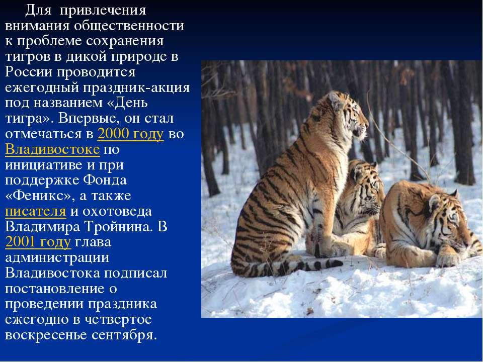 Для привлечения внимания общественности к проблеме сохранения тигров в дикой ...