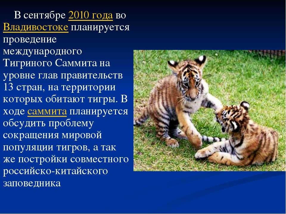 В сентябре 2010года во Владивостоке планируется проведение международного Ти...