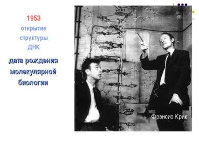 дата рождения молекулярной биологии 1953 открытие структуры ДНК Фрэнсис Крик ...