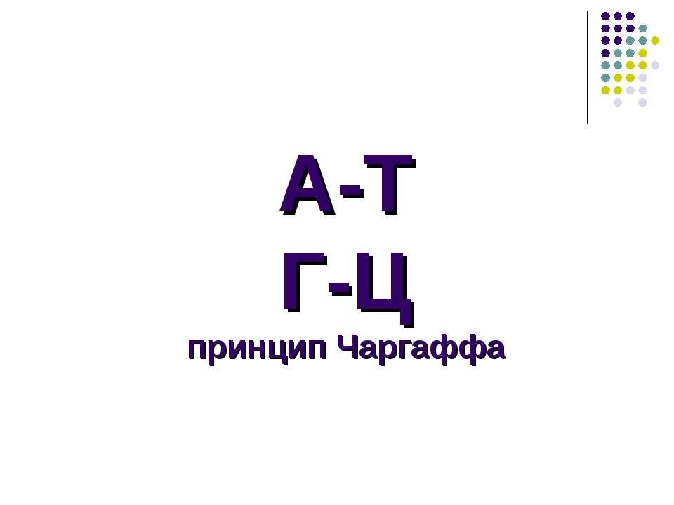 А-Т Г-Ц принцип Чаргаффа