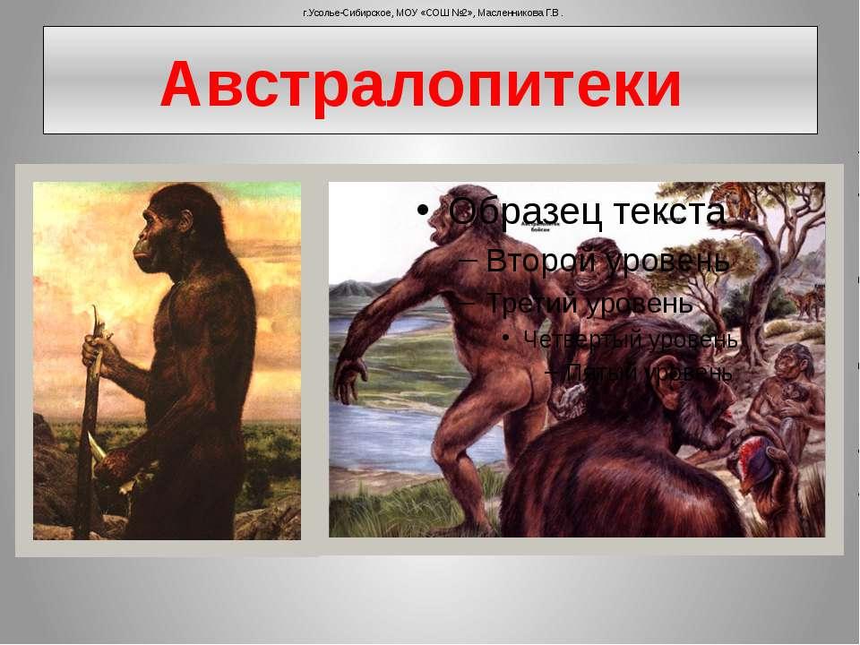 Австралопитеки г.Усолье-Сибирское, МОУ «СОШ №2», Масленникова Г.В.