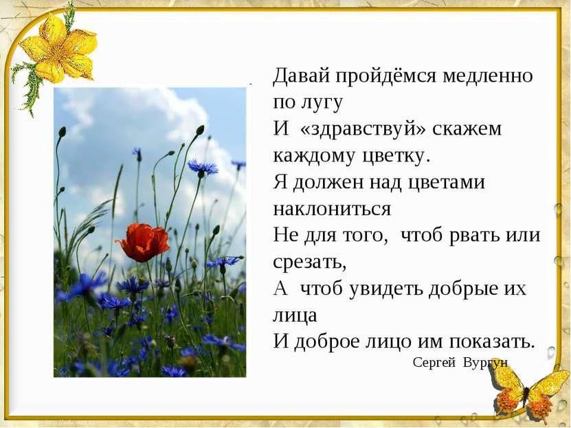 Давай пройдёмся медленно по лугу И «здравствуй» скажем каждому цветку. Я долж...