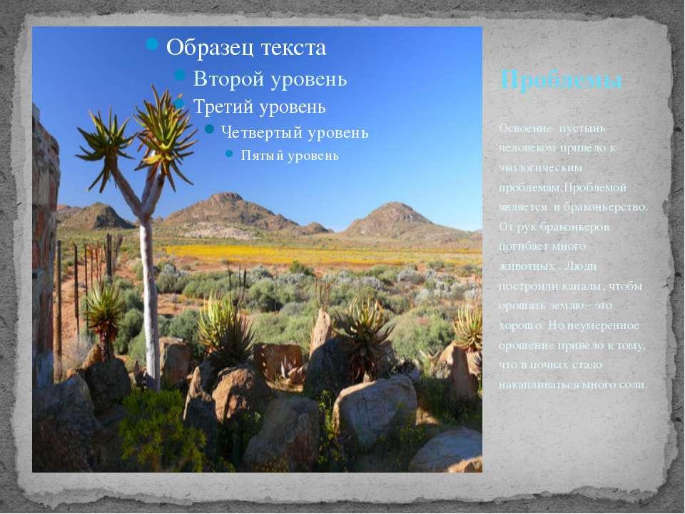 Освоение пустынь человеком привело к экологическим проблемам.Проблемой явл...
