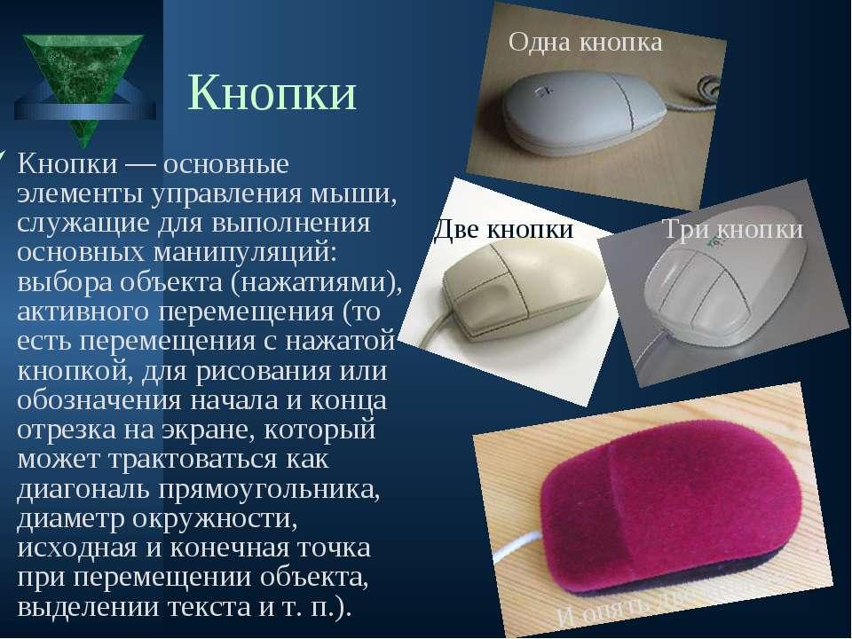Кнопки Кнопки — основные элементы управления мыши, служащие для выполнения ос...