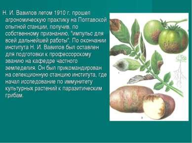 Н. И. Вавилов летом 1910г. прошел агрономическую практику на Полтавской опыт...