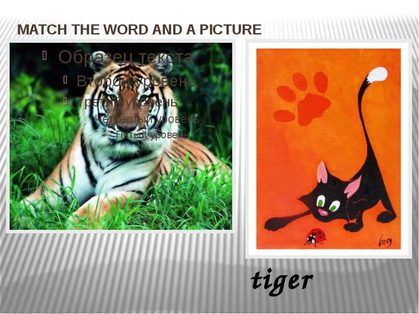 MATCH THE WORD AND A PICTURE tiger
