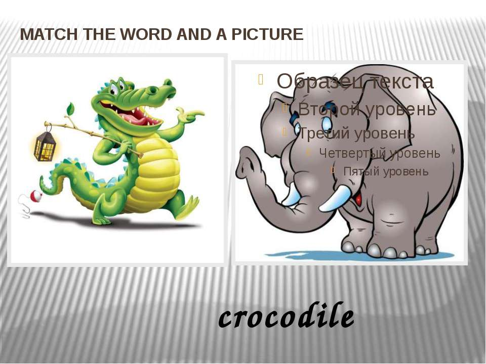 MATCH THE WORD AND A PICTURE crocodile