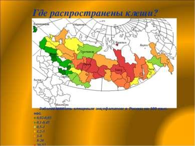 Где распространены клещи? Заболеваемость клещевым энцефалитом в России на 100...