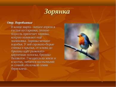 Зорянка Отр. Воробьиные В конце марта - начале апреля в густые кустарники, ле...