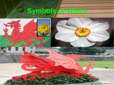 Symbols of Wales