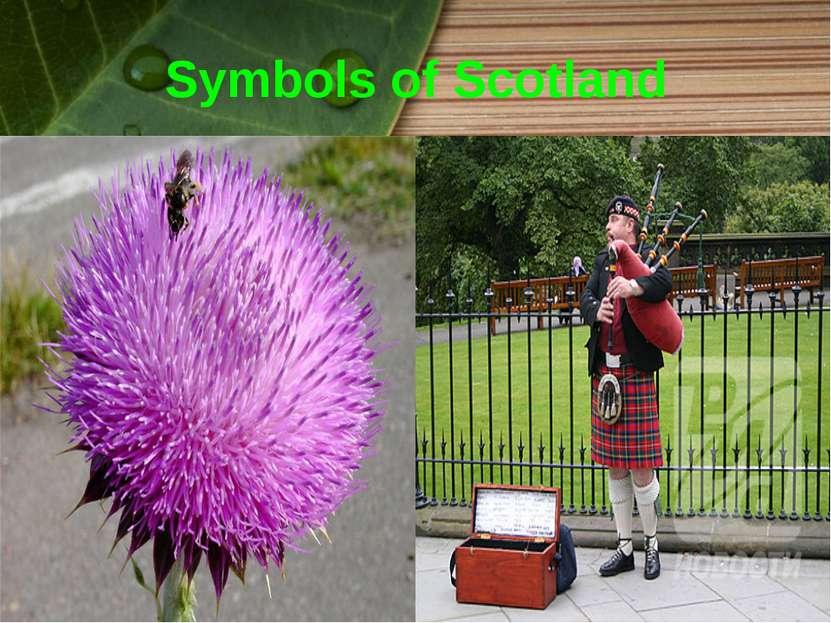 Symbols of Scotland