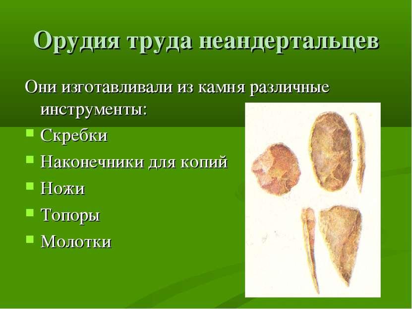 Орудия труда неандертальцев Они изготавливали из камня различные инструменты:...