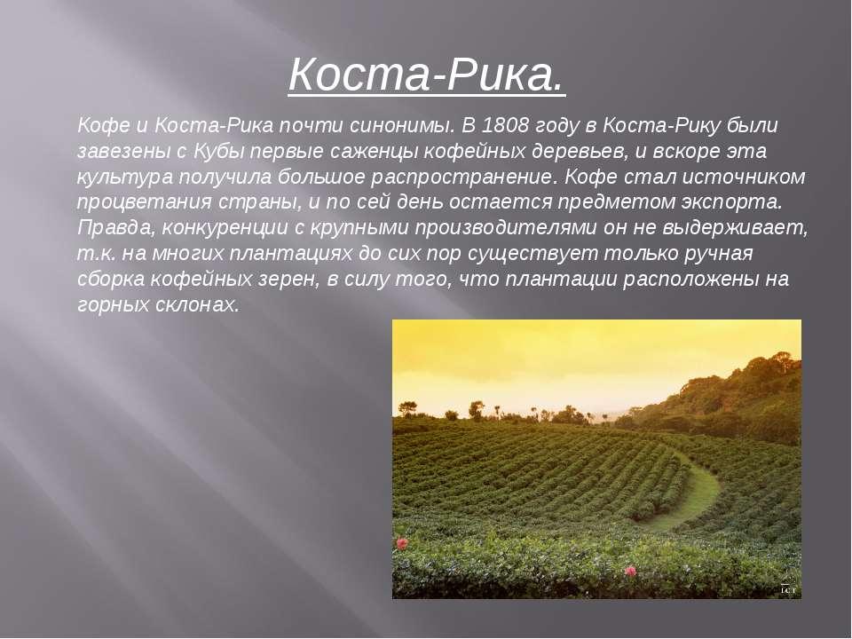Коста-Рика. Кофе и Коста-Рика почти синонимы. В 1808 году в Коста-Рику были з...