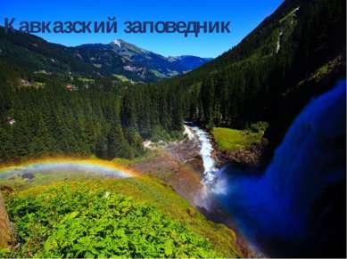 Исмаилов Рамин и Соловьёв Арсений. Презентацию сделали Кавказский заповедник