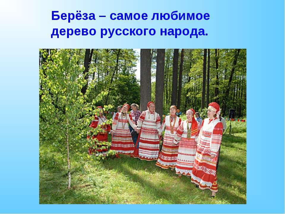 Берёза – самое любимое дерево русского народа.