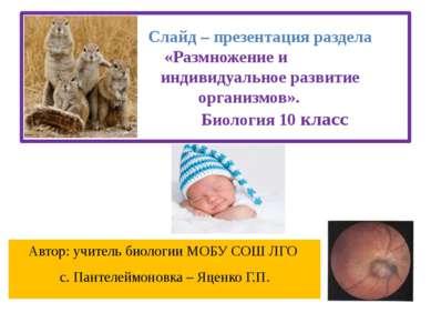 Слайд – презентация раздела «Размножение и индивидуальное развитие организмов...