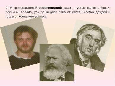 2. У представителей европеоидной расы – густые волосы, брови, ресницы, борода...