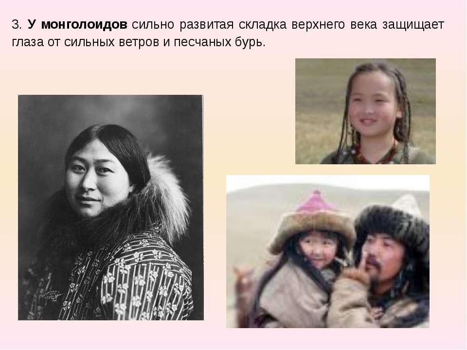 3. У монголоидов сильно развитая складка верхнего века защищает глаза от силь...