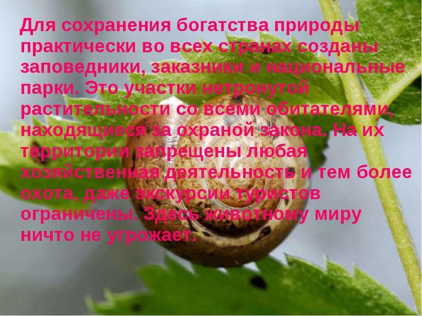 Для сохранения богатства природы практически во всех странах созданы заповедн...