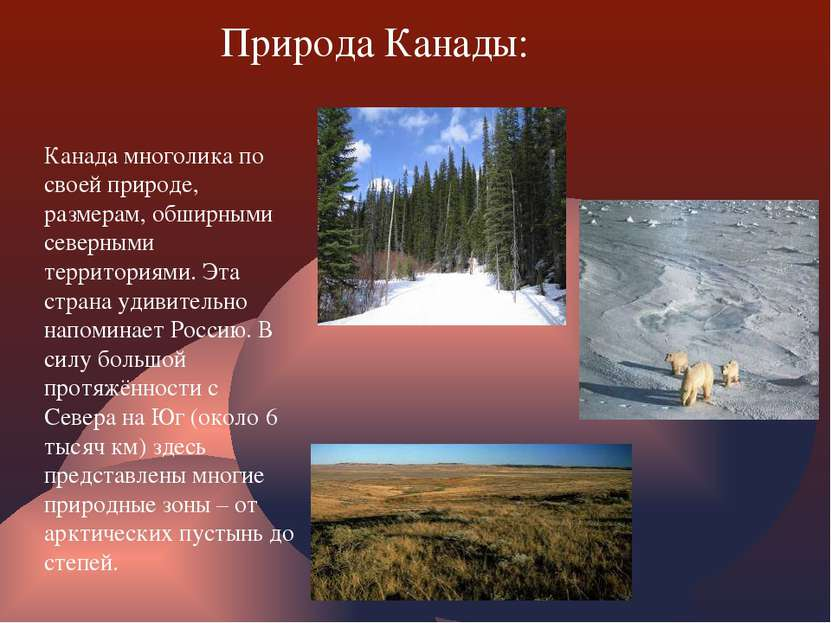 Природа Канады: Канада многолика по своей природе, размерам, обширными северн...